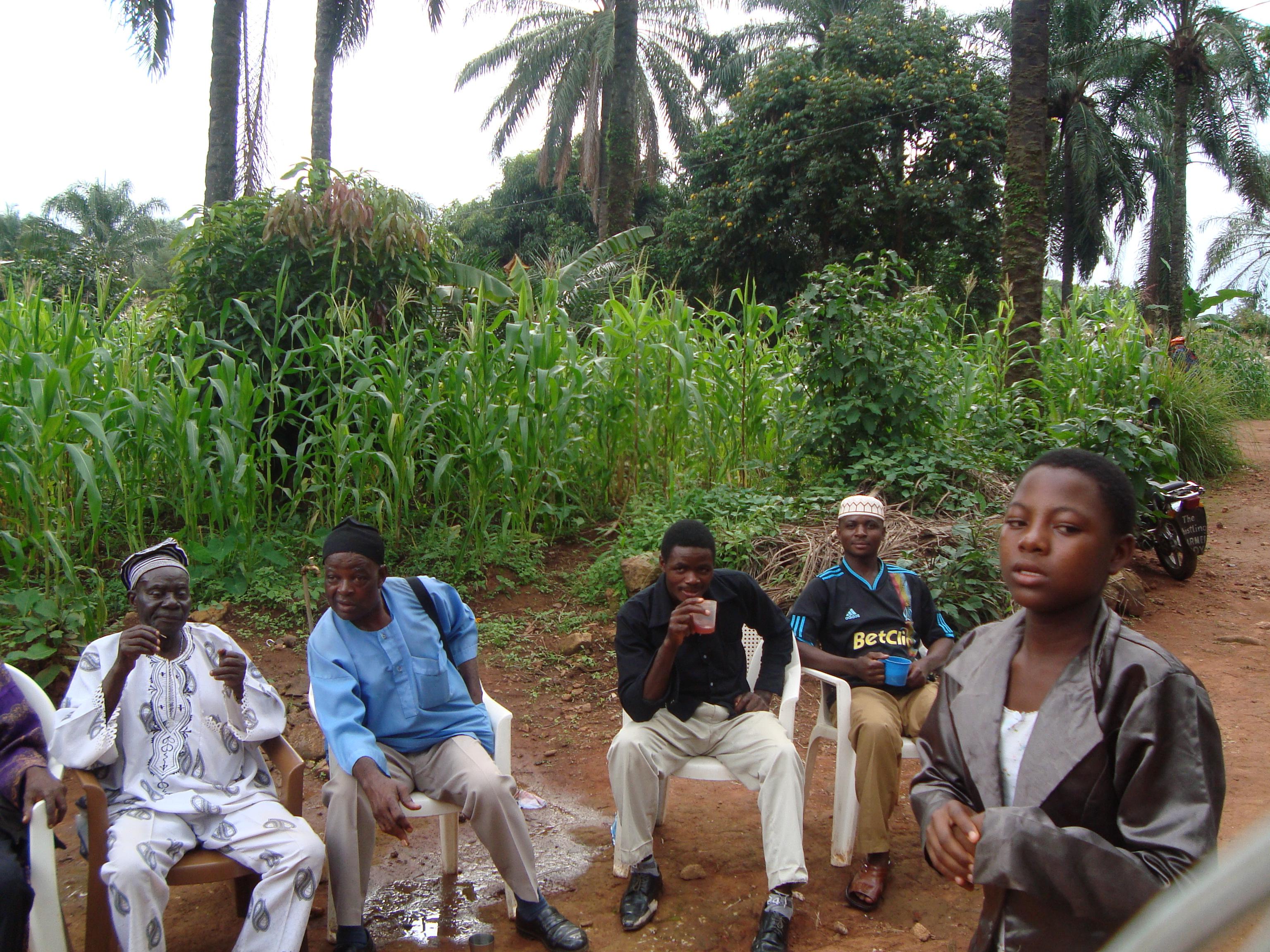 Up Station Mountain Club: Bitter Kola, African Viagra