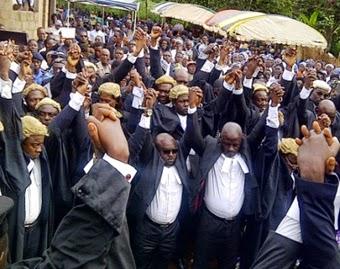 Cameroon Anglophone Lawyers