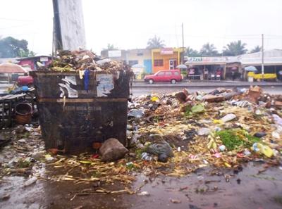 Garbage_disposal
