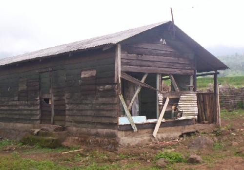 Damaged_house