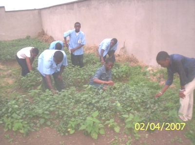 Students_working